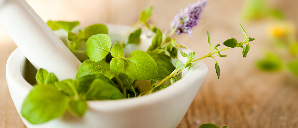 Naturopathy – an untapped health resource