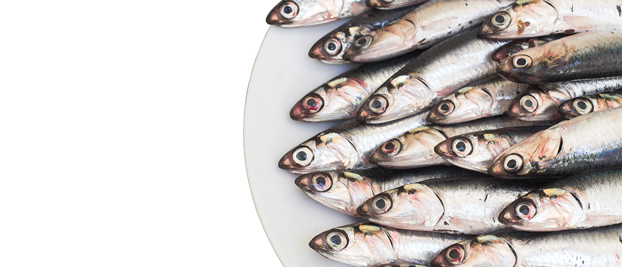 Omega -3 fatty acid and inflammatory and immune function